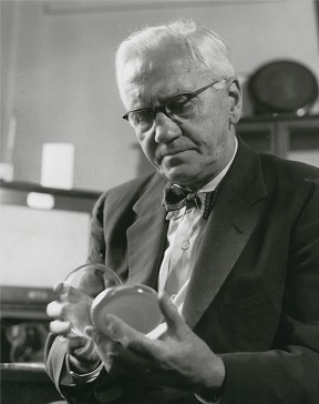 Alexander Fleming with a culture plate