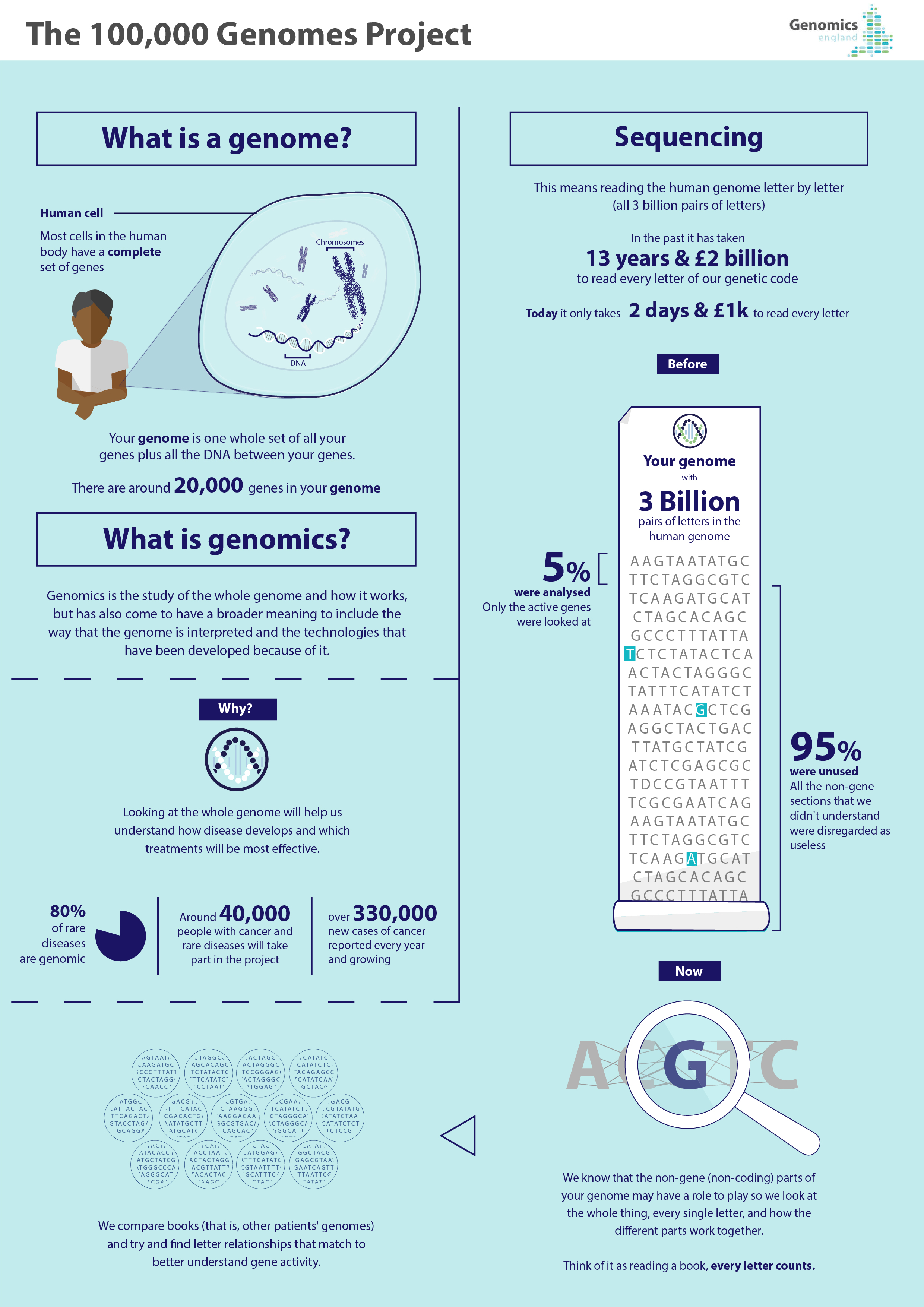 genomics infographic